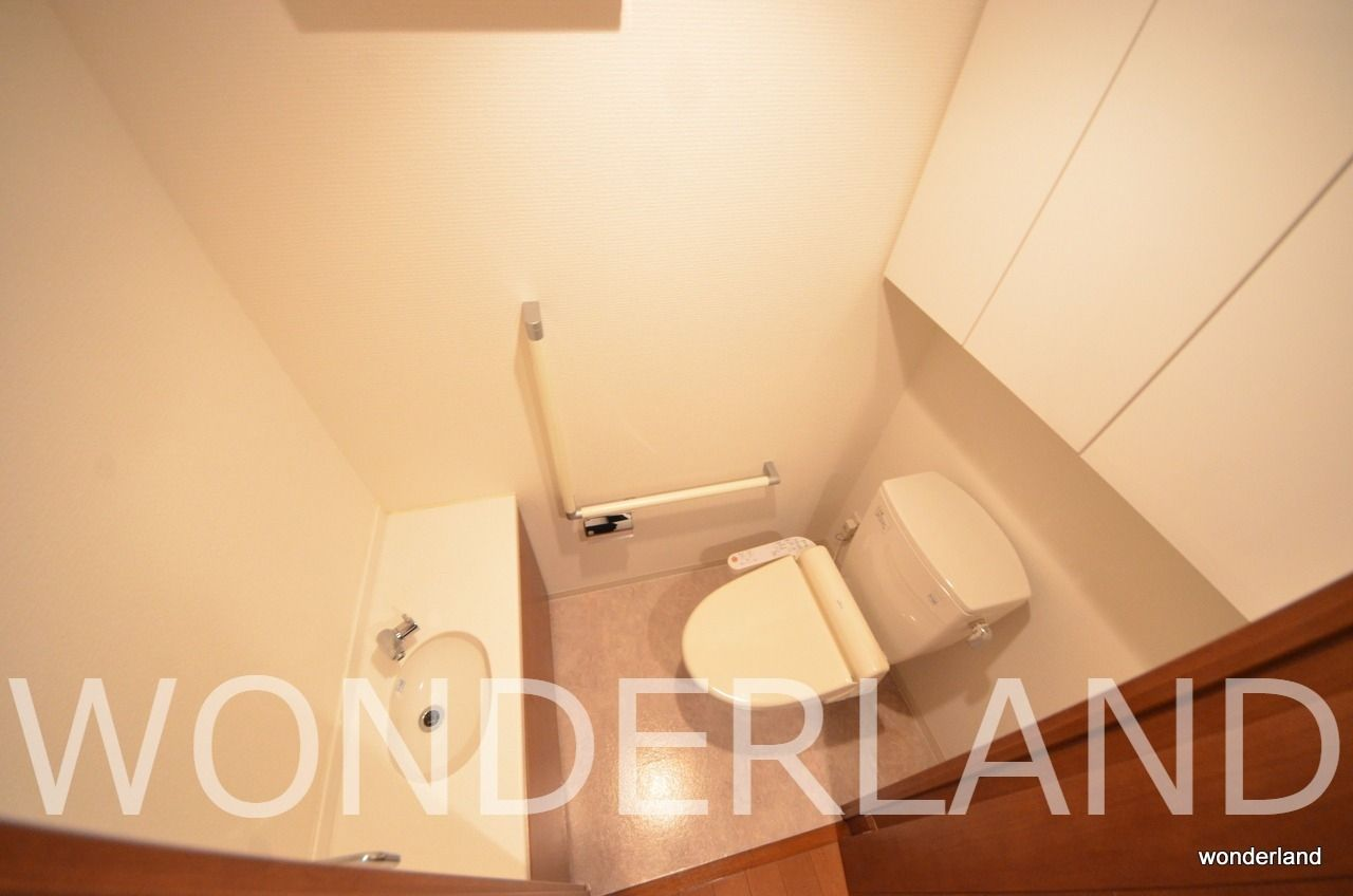 専用の手洗い付きのトイレ