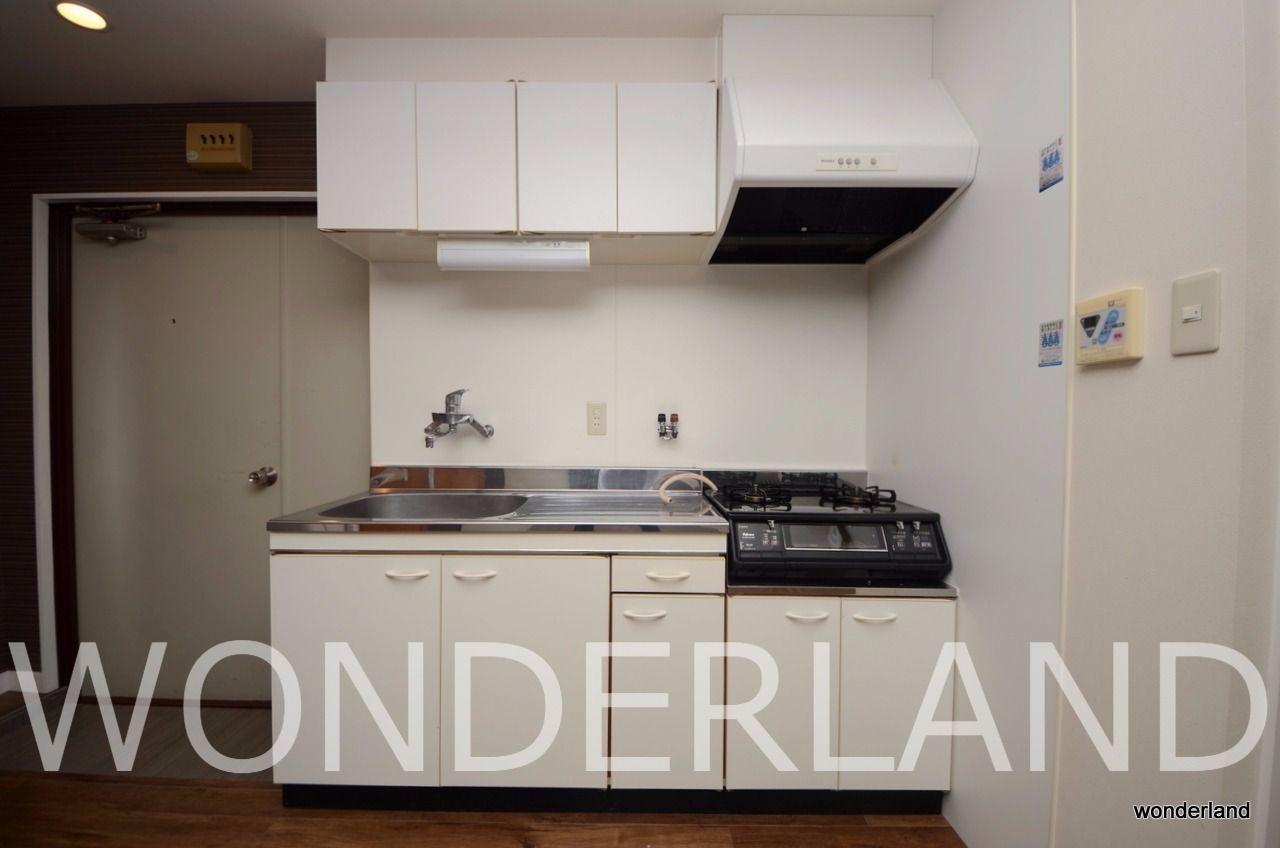 料理スペースの確保された大き目のキッチン
